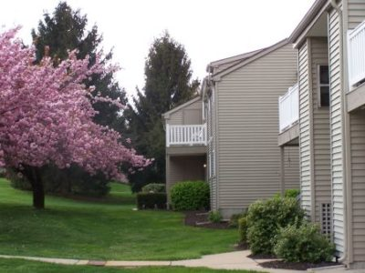 apartment building with beautiful pink cherry tree in lawn