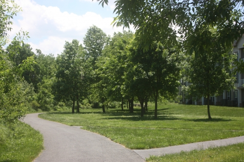 photo of walking path